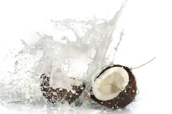 receita leite de coco