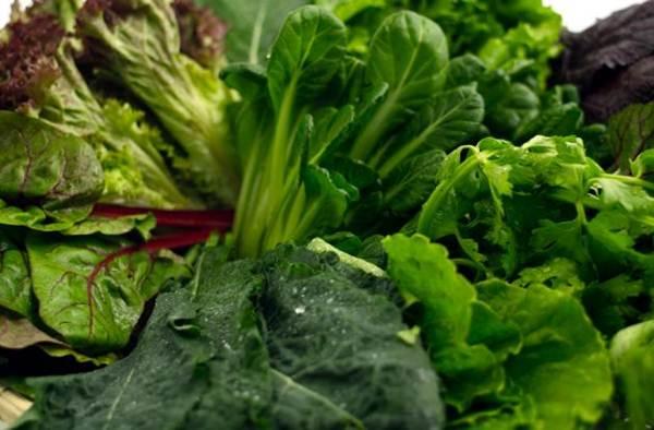 vegetais verdes ricos e saudaveis