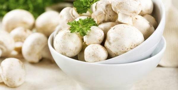 Dieta de champignons para eliminar gordura