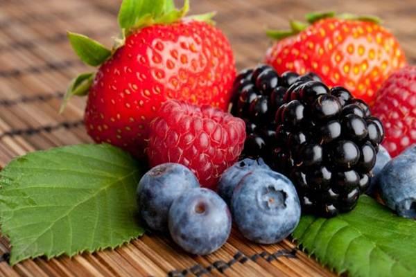 dieta rica em antioxidante
