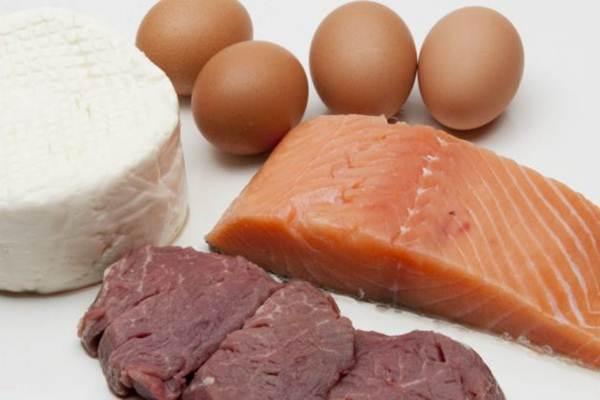alimentos com proteinas