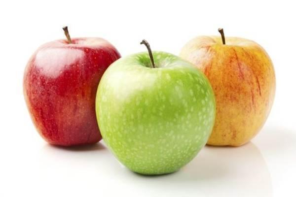 alimentos ajudam a perder peso