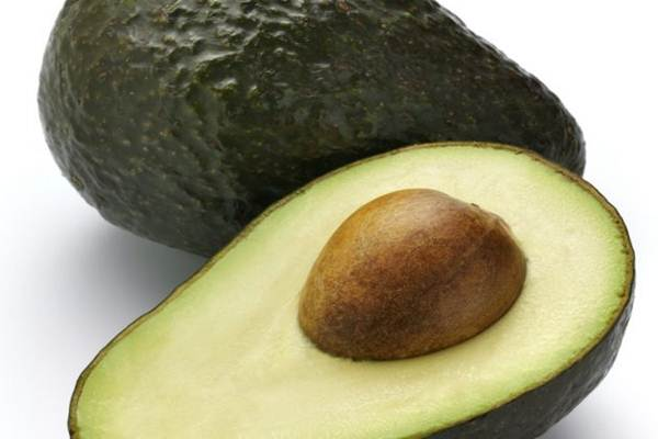 beneficios batida de abacate