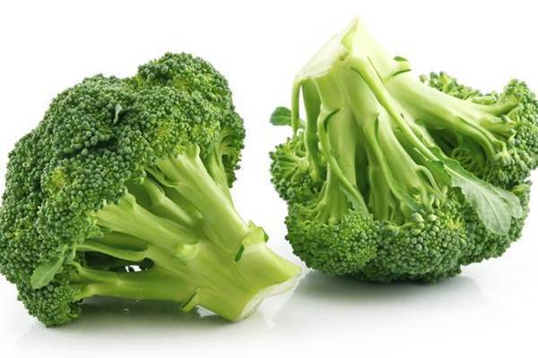 alimentos perder peso