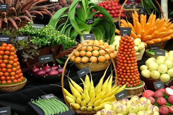 mitos e verdades sobre alimentacao