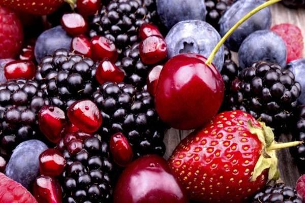 alimentos para ganhar musculos