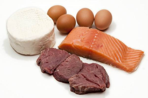 dietas de proteina