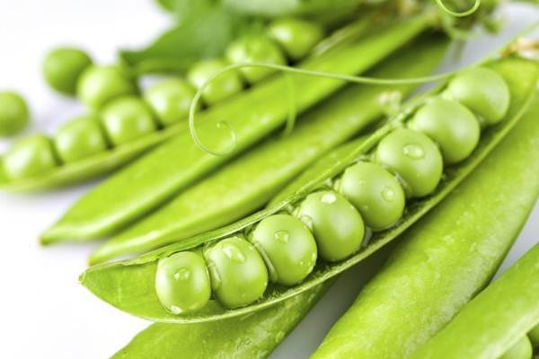 vegetais com alto teor de fibras