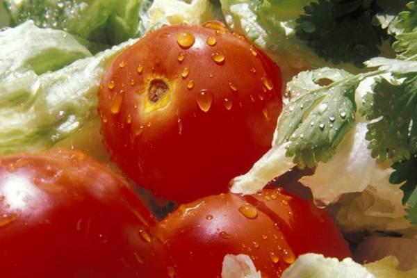 alimentos que nao devem ser refrigerados