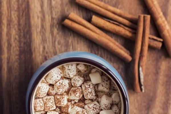 alimentos que queimam gordura