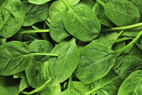 mitos sobre os vegetais