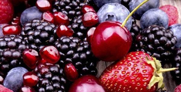 Benefícios de 5 frutas silvestres