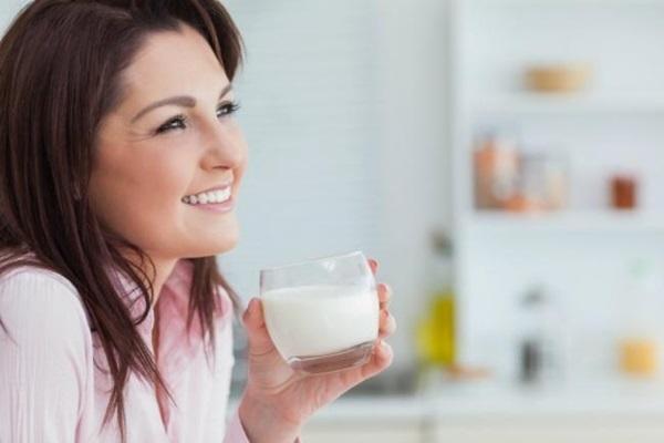 produtos lácteos para incluir na dieta