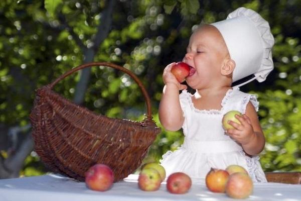 dieta vegana para bebes