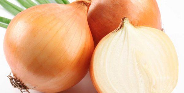 Benefícios da cebola
