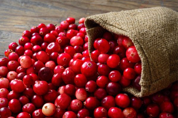 beneficios do cranberry
