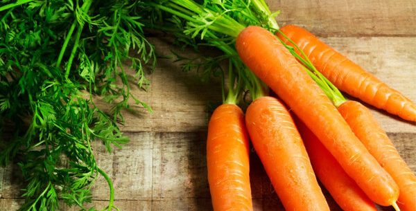 Benefícios da cenoura