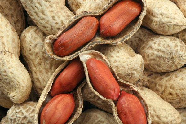 beneficios do amendoim